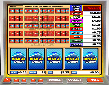 bingo cabin deuces wild video poker online casino game